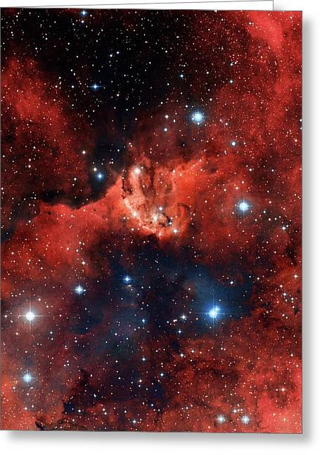 V1318 Cygni Star Cluster Greeting Card by Robert Gendler