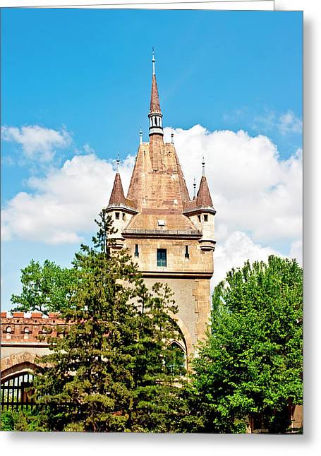 Vajdahunyad Castle In Varosliget (city Greeting Card