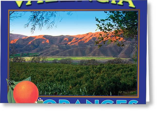 Valencia Oranges Greeting Card by Bill Jonas