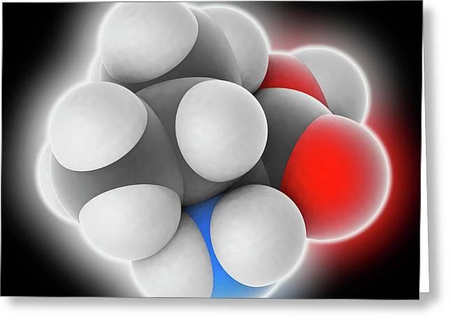 Valine Molecule Greeting Card by Laguna Design