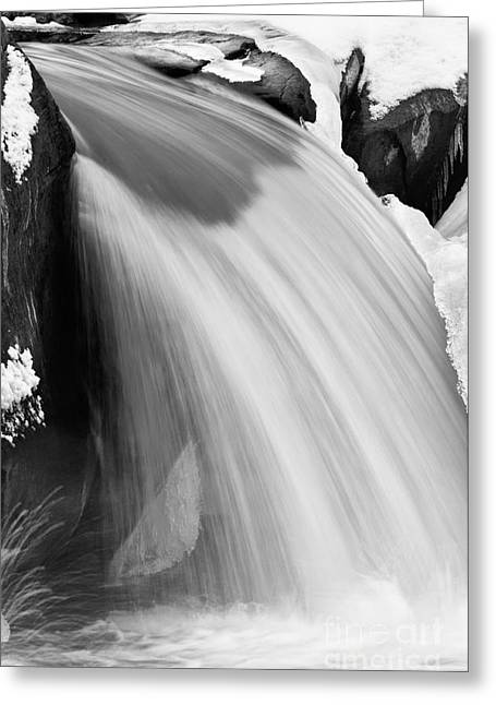 Valley Falls D30009153_bw Greeting Card