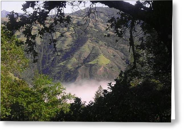 Valley Fog Greeting Card by Justin Moranville