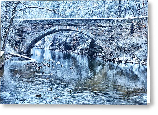 Valley Green Ducks In Winter Greeting Card by Bill Cannon