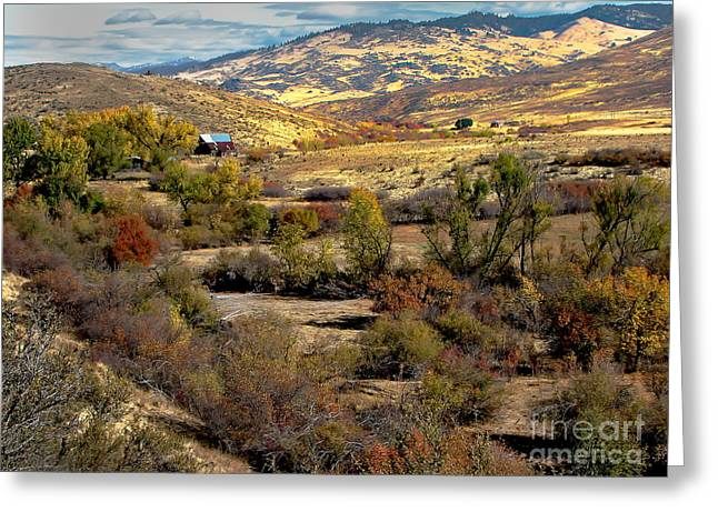 Valley View Greeting Card by Robert Bales