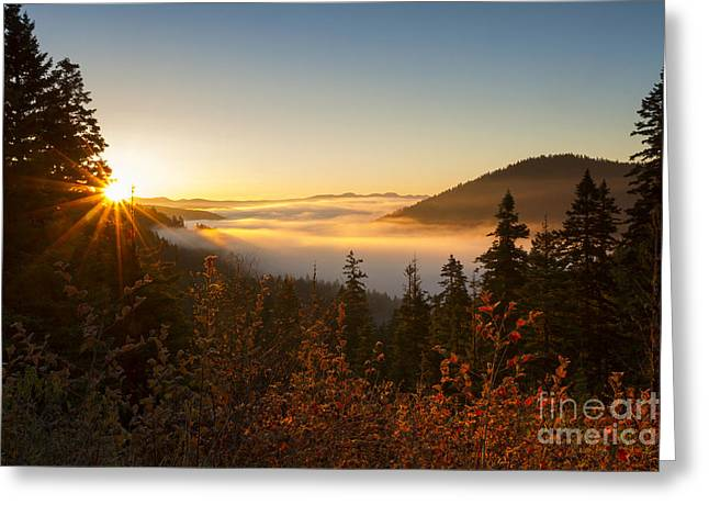 Valleys Of Mist Greeting Card by Idaho Scenic Images Linda Lantzy