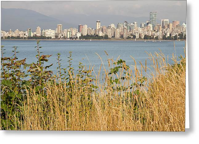 Greeting Card featuring the photograph Vancouver Bc Downtown From Hasting Mills Park by JPLDesigns