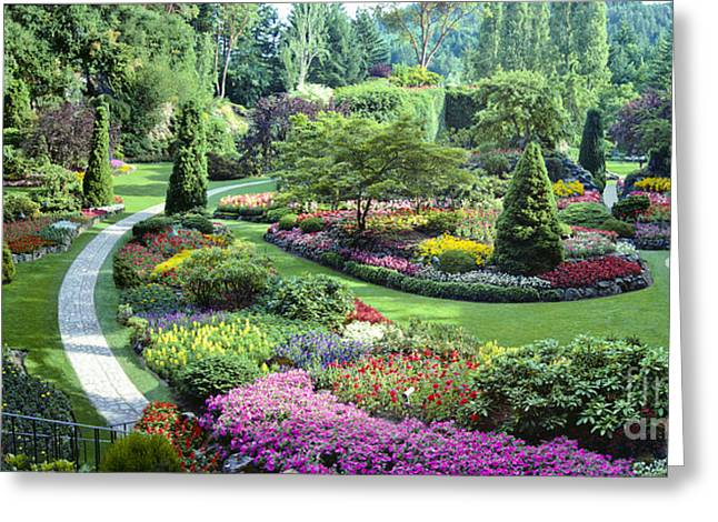 Vancouver Butchart Sunken Gardens Beautiful Flowers No People Panorama Greeting Card