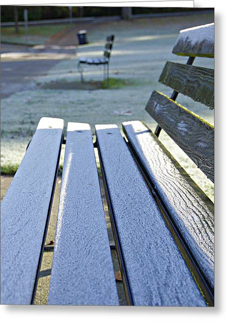 Vancouver Frosty Morning Greeting Card by Marilyn Wilson