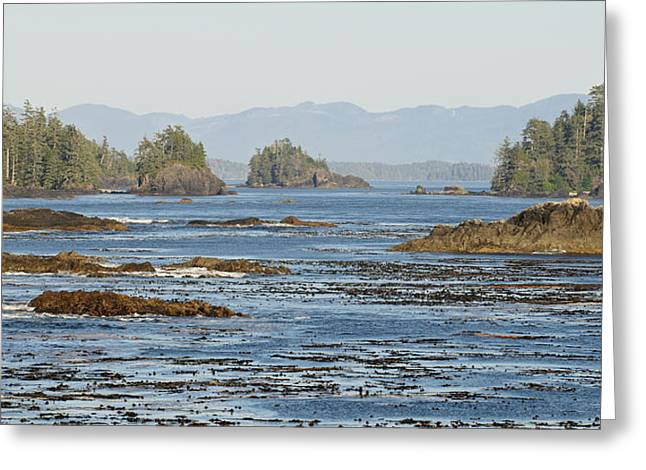 Vancouver Island Greeting Card by Matt Freedman