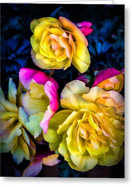 Vancouver Island Roses Greeting Card