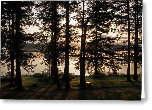 Vancouver Island Sunrise Greeting Card by Inge Riis McDonald
