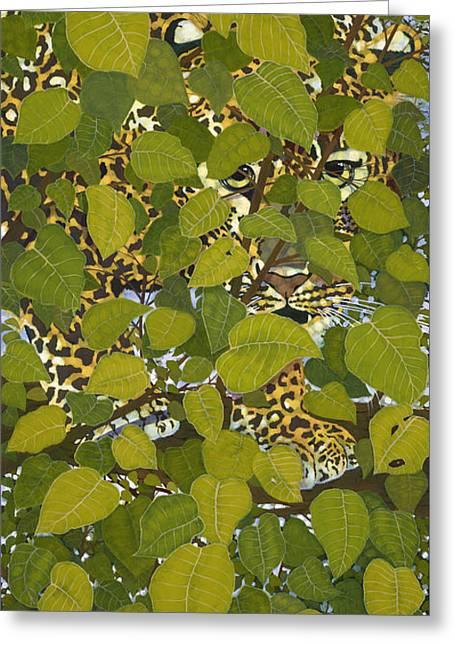 Vanishing  Leopard Greeting Card by Ken Church