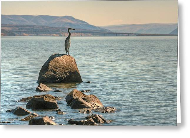 Vantage Point Greeting Card by Jeff Cook