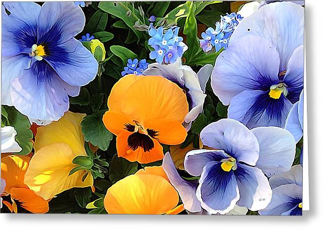 Greeting Card featuring the photograph Various Violets by Gabriella Weninger - David