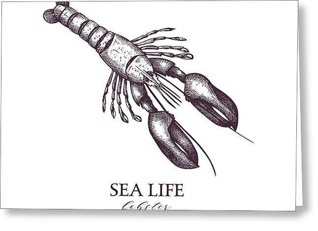 Vector Sea Life Illustration. Hand Greeting Card