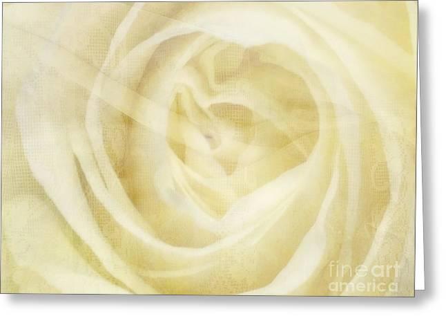 Veiled Beauty Greeting Card by Andrea Kollo