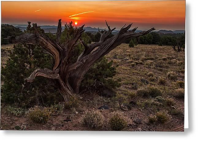 Veiled Sunrise Greeting Card by Jennifer Grover