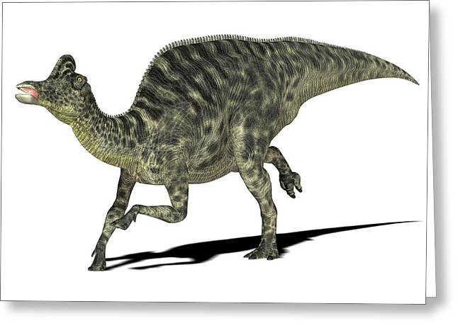 Velafrons Dinosaur Greeting Card