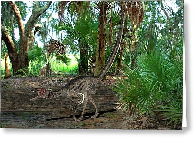 Velociraptor Dinosaur Greeting Card by Friedrich Saurer