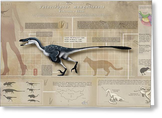 Velociraptor Infographic Greeting Card