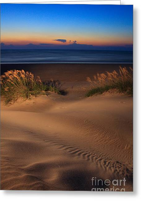 Velvet Morning On Pea Island Greeting Card