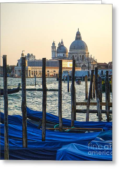 Venice Italy - Santa Maria Della Salute And Gondolas Greeting Card by Gregory Dyer