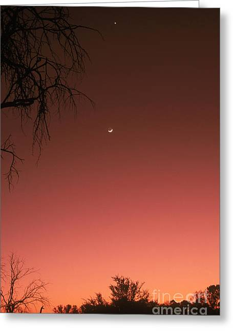 Venus & Moon Greeting Card by Gregory G. Dimijian, M.D.