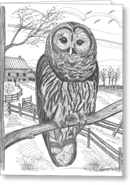 Vermont Barred Owl Greeting Card