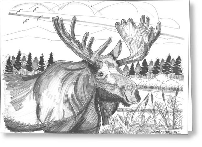 Vermont Bull Moose Greeting Card