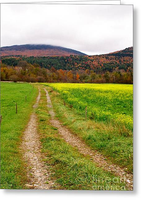 Vermont Farmer's Track Greeting Card