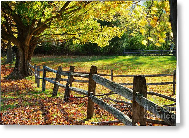 Vermont Fence Greeting Card by Jim  Calarese