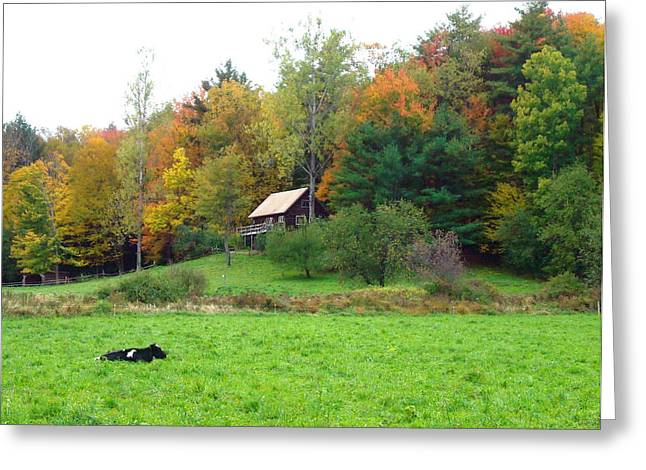 Vermont Ideal Greeting Card