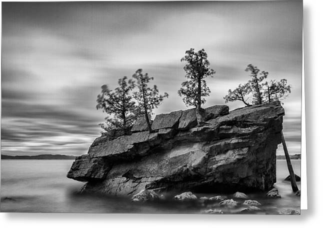 Vermont Lake Champlain Boulder Trees Black And White Greeting Card