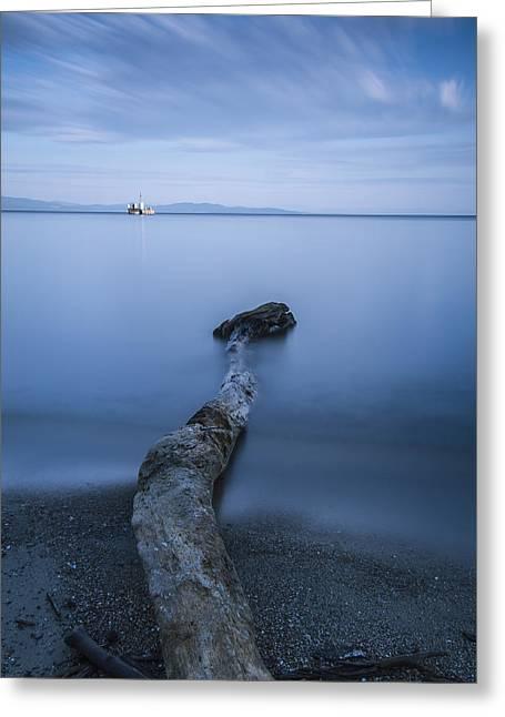 Vermont Lake Champlain Driftwood Sunrise Greeting Card