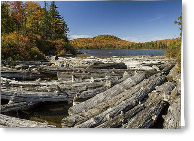 Vermont Kettle Pond Panorama Autumn Forest Greeting Card