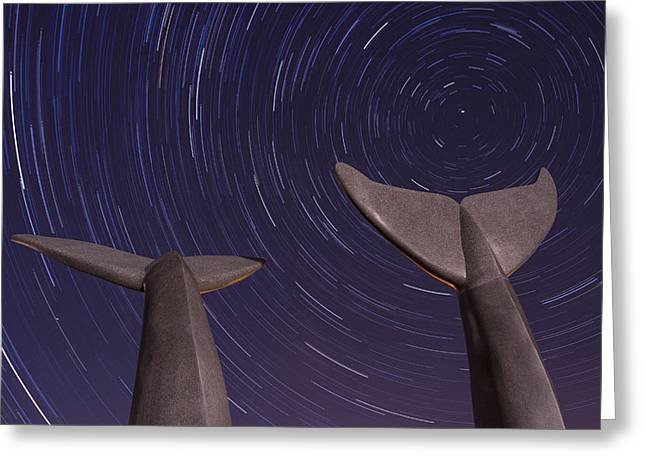 Vermont Night Landscape Star Trails Whale Tails Greeting Card by Andy Gimino