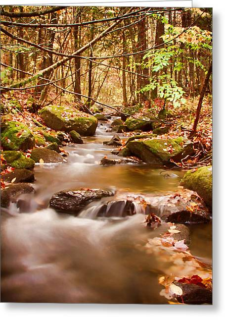 Greeting Card featuring the photograph Vermont Stream by Jeff Folger