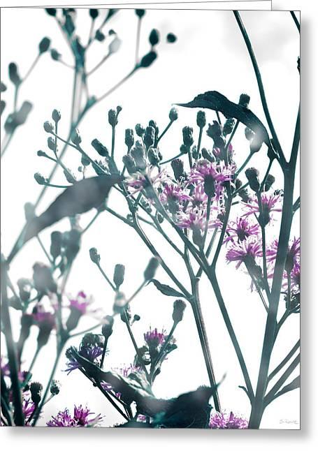 Vernonia  Greeting Card