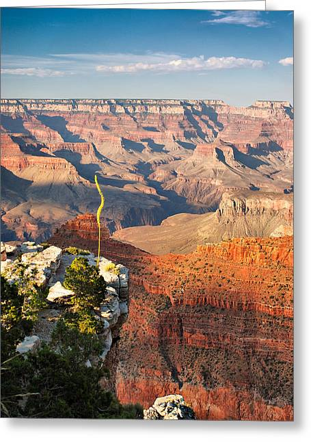 Grand Canyon At Sunset Greeting Card by Gregory Ballos