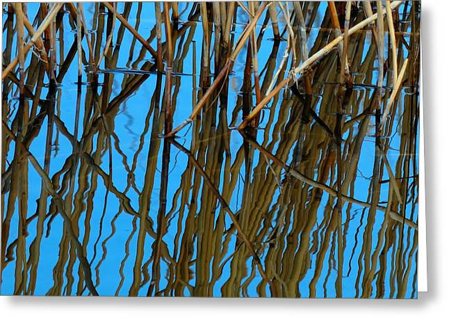 Vertical Reflections Greeting Card