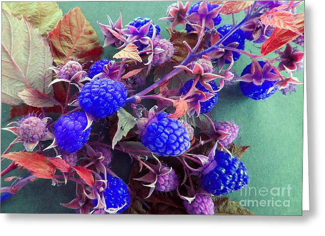 Very Blue Berries Greeting Card by Tina M Wenger