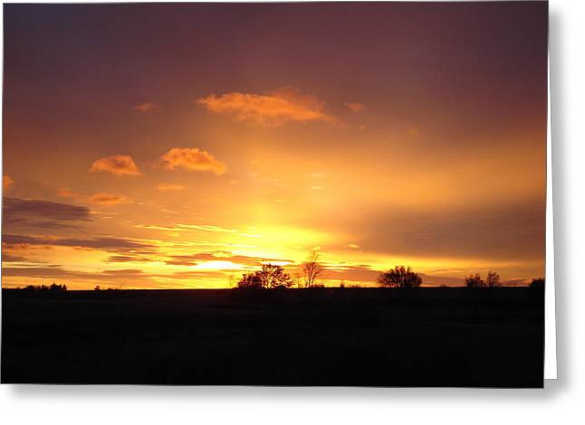 Veteran's Day Sunset 2013 Greeting Card by J L Zarek