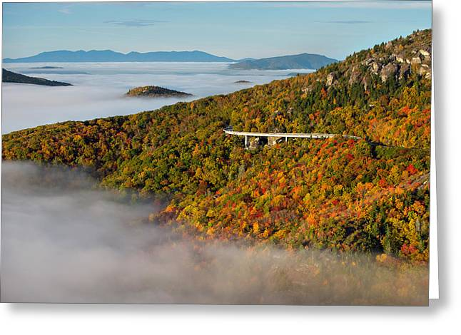 Viaduct In Autumn Greeting Card by Tommy  White