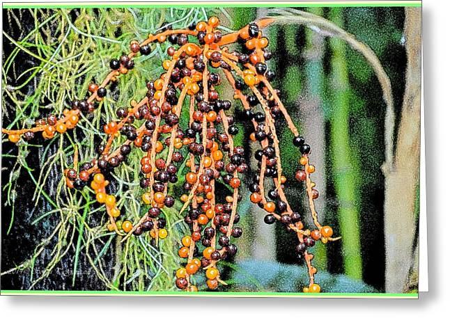 Vibrant Berries Greeting Card