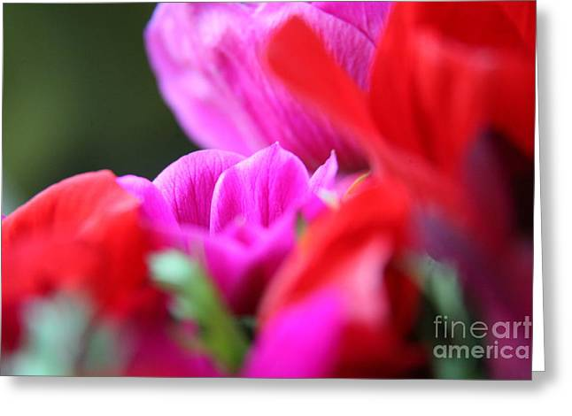 Greeting Card featuring the photograph Vibrant Bouquet  by Lynn England