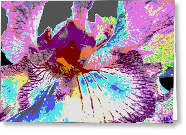 Greeting Card featuring the photograph Vibrant Petals by Sally Simon