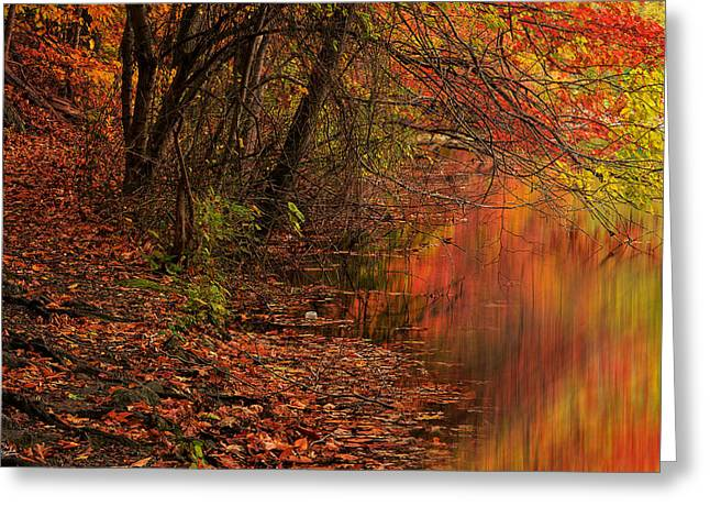 Vibrant Reflection Greeting Card