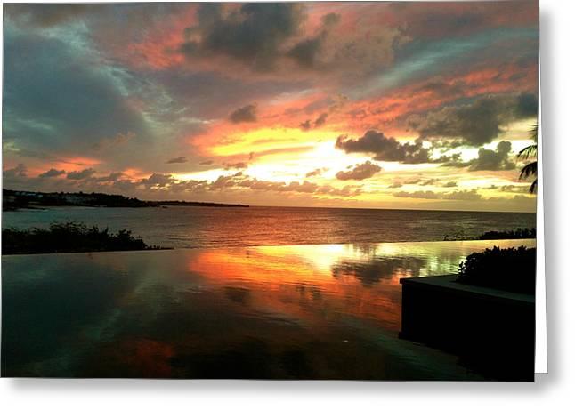 Viceroy Sunset Greeting Card by Jennifer Lamanca Kaufman