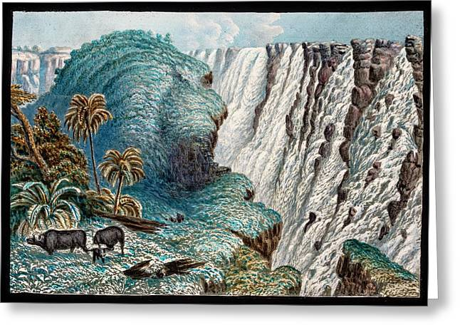 Victoria Falls Buffalo Greeting Card