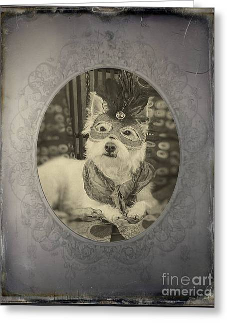 Victorian Westie Greeting Card by Edward Fielding